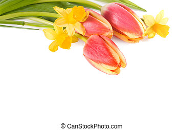 bouquet of flowers - bouquet of the fresh tulips and...
