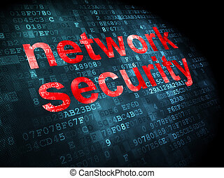 Privacy concept: Network Security on digital background -...