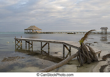 Fallen tree and Piers at Sunset - A fallen palm tree and two...