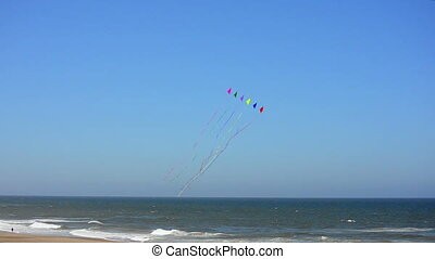 Kites on the Beach - Colorful kites flying over the Pacific...