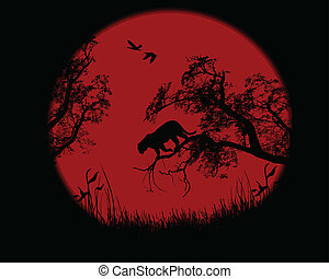 Silhouette of leopard on tree