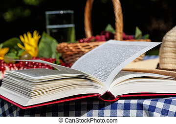 Book on table - An opened book lying on a picnic table