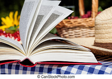Picnic novel - Picnic space with an opened novel in the...