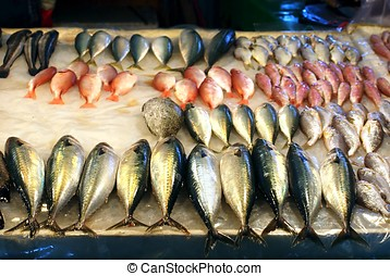 Fish for Sale in Taiwan - Assorted fresh fish is being...