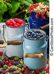 Fresh berry fruits in churn