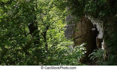 Rattlesnake Point Gorge Slider - Slider dolly shot of gorge...