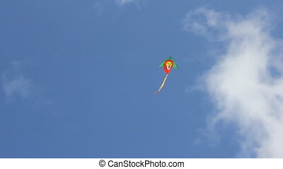 Kite flying under blue sky 8941