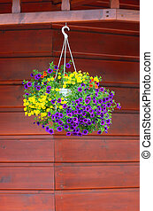 Vase with flowers - Pot with beautiful flowers on the facade...