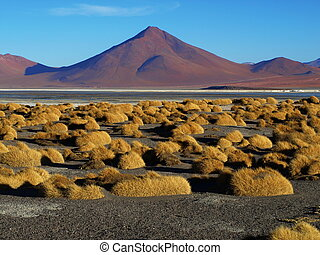 Landscape at Laguna Colorada (Bolivia)