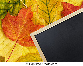 blackboard on autumn leaves, background autumn theme