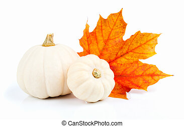 white pumpkins with red leaf, isolated on the white...