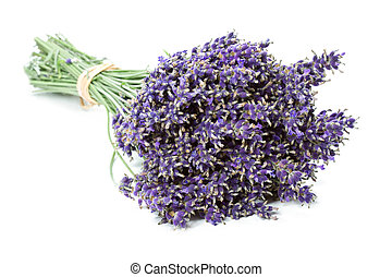 Bunch of dried Lavender flowers Lavandula angustifolia,...
