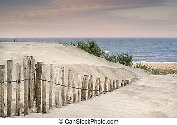 füves, homok, dűnék, táj, napkelte