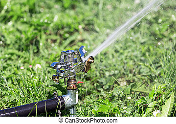 Sprinkler on green grass