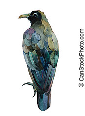 black raven watercolor painting isolated