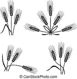 Wheat and rye - Set of silhouette images of wheat ears