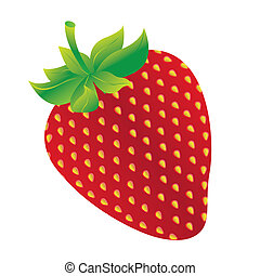 strawberry design over white background vector illustration