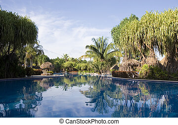 Placid Blue Pool - A calm and empty blue pool in a tropical...