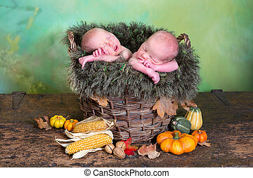 Autumn twins - Rustic nature image of two newborn twin...