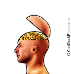 Profile Open Minded Head 4