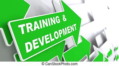 Training and Development. Education Concept.