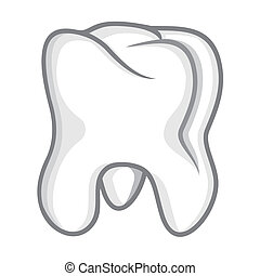 Tooth isolate on white