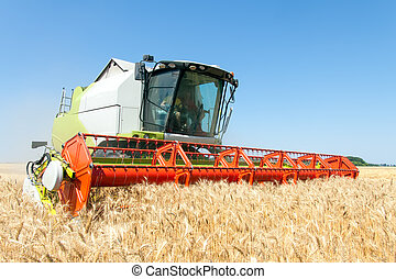 Combine harvester working on a wheat field - Combine...