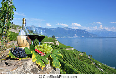 Red wine on the terrace vineyard in Lavaux region,...