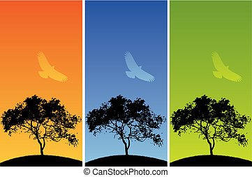 three colorful backgrounds - Choice of three colorful...