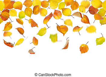 Seamless falling autumn leaves