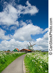 Windmills at Dutch Zaanse Schans - Wild flowers in front of...