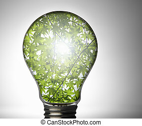 電球, 植物, 中