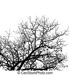 Tree - bare tree vector background with space for text
