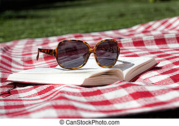Sunbathing in garden - Blanket, sunglasses and book for...