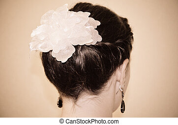 Evening woman hairstyle
