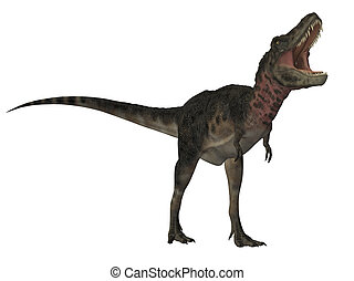 Tarbosaurus dinosaur isolated on white background