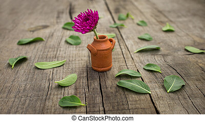 Flower Pot - A flower pot with leaves on wooden background.