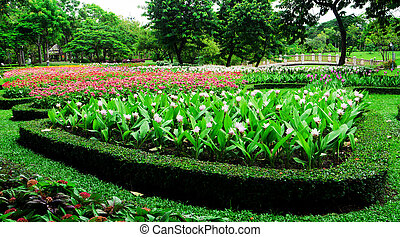 Colourful Flowerbeds