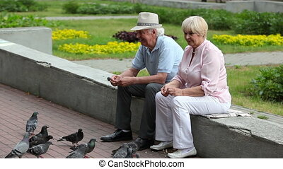 Feeding birds - Elderly couple crumbing bread and feeding...