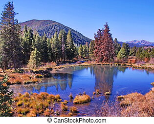 Colorado Pond in Fall