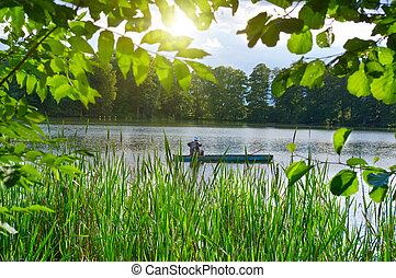 estate,  inveterate, lago, pescatore, pesca, barca