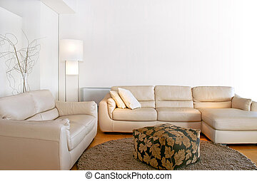 Bright living room with two big sofas