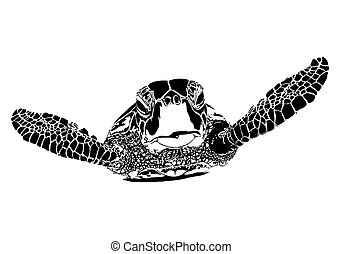 Turtle silhouette on white background