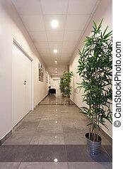 Corridor - Long corridor in a modern office, vertical