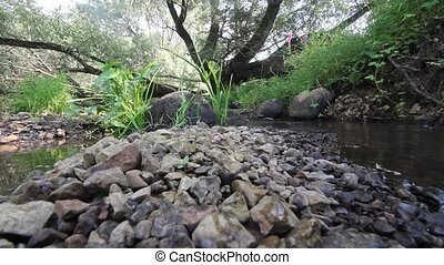 small fast mountain river - mountain small river with clear...