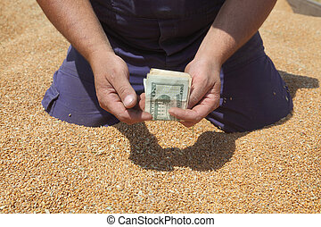 Agricultural concept - Farmer hands holding dollar banknote...
