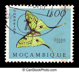 african moon moth - MOZAMBIQUE - CIRCA 1953: A stamp printed...