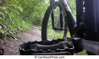 Bicycle ride through forest. Wheel angle