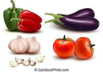 The big colorful group of vegetables. Vector