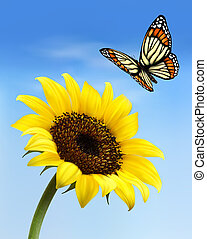 Nature background with sunflower and butterfly. Vector illustration.